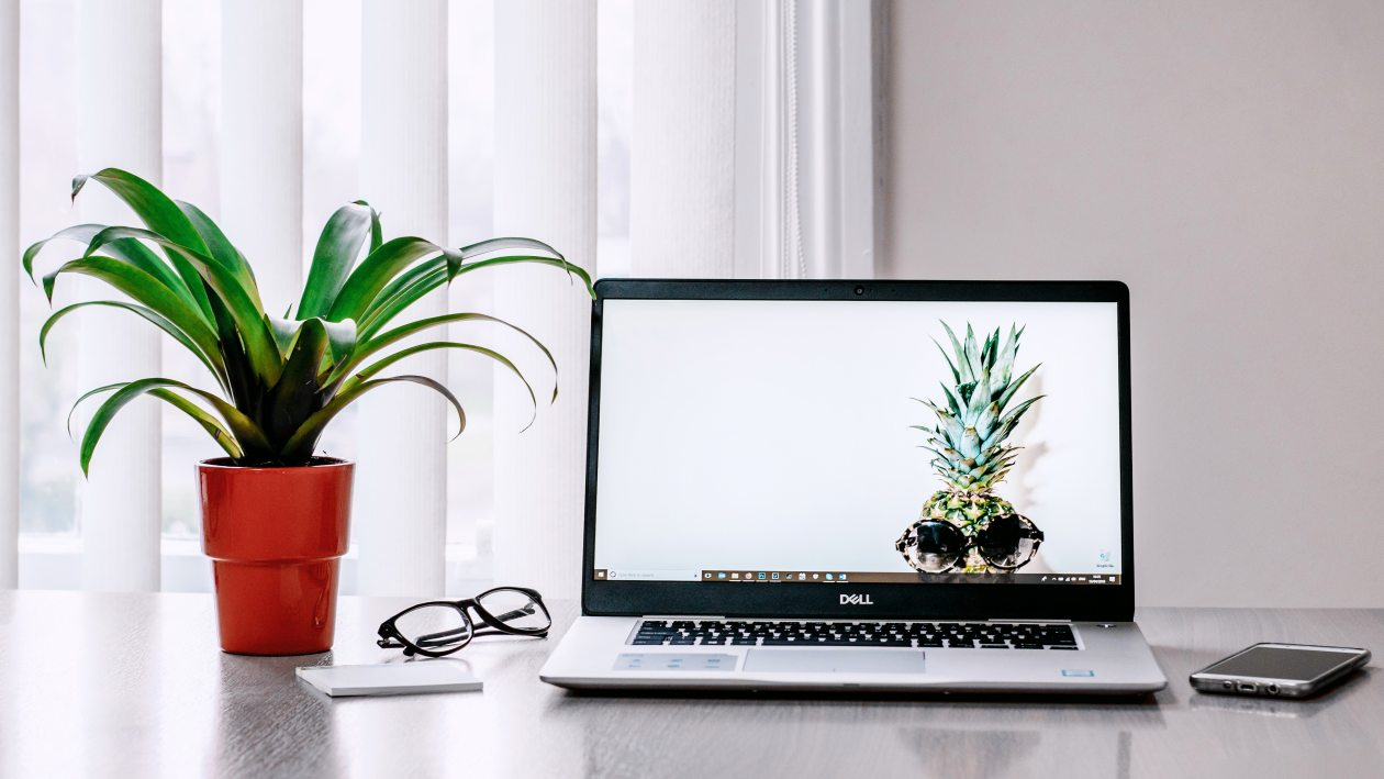Image of a laptop on a table next to a phone, a pair of glasses, and a plant